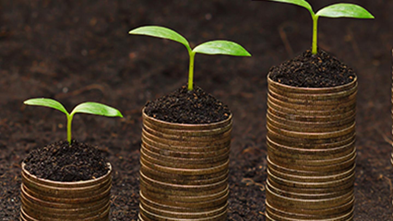 DT Blog - ESG Winners - Insights